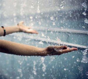 Нельзя носить шубу в дождь
