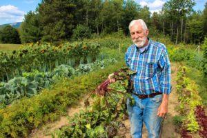 9 секретов опытного садовода