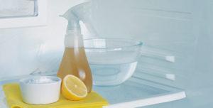 лимон для холодильника