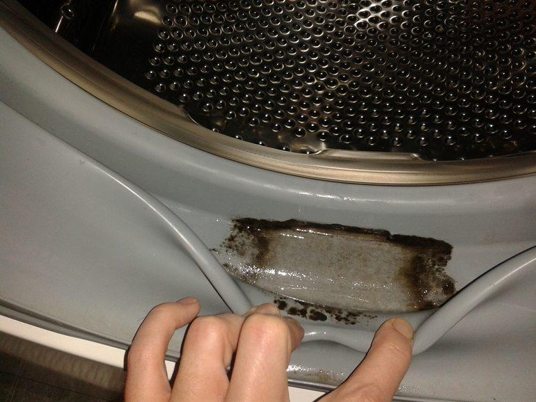 Плесень в машинке