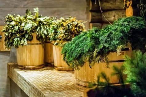Как хранить веники для бани из березы и другие виды