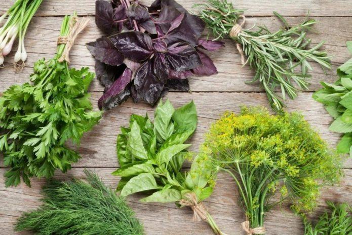 Как хранить зелень в холодильнике долго свежей без заморозки