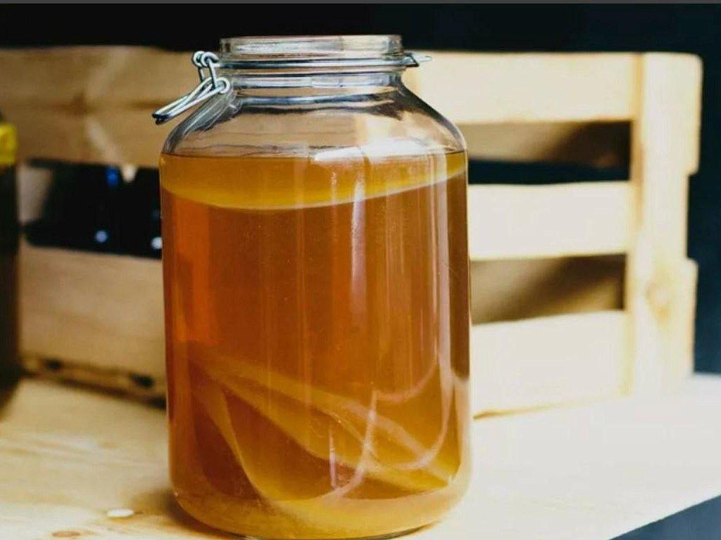 Как хранить чайный гриб при длительном отсутствии дома
