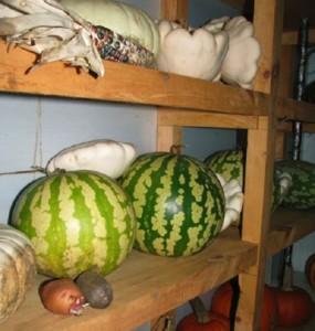 Сколько хранится арбуз в холодильнике разрезанный