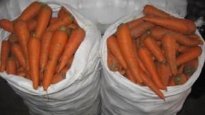 Как хранить морковь правильно в домашних условиях