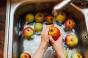 Как хранить яблоки в домашних условиях на зиму